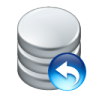 96x96px size png icon of data undo