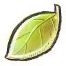 96x96px size png icon of G12 Leaf