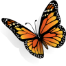 96x96px size png icon of butterfly