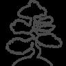 96x96px size png icon of bonsai