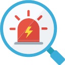 Icon asset risk audit Icon