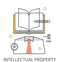 intellectual property right Icon