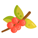 COFFEE TREE Icon