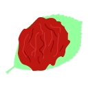 Preserved fruit Icon