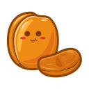Dried apricot Icon