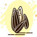 Melon seeds _1 Icon