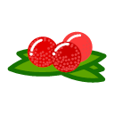 Waxberry Icon