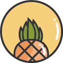 Pineapple -01 Icon