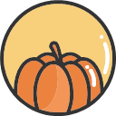 Pumpkin -01 Icon