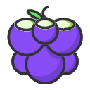 Grapes - sweet and fresh Icon