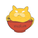 Medium bowl Icon