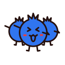 02 blueberry dry Icon