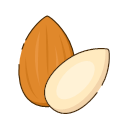 Almonds Icon