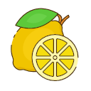 Dried lemon Icon