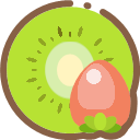 Dried fruit Icon