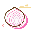 Dried onion Icon