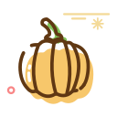 dried pumpkin Icon