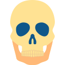 Human skeleton Icon