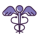HEALTHCARE SIGN Icon