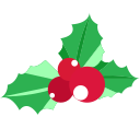 Christmas fruit Icon
