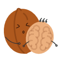 Leatheroid walnut Icon