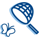 Butterfly catching Icon