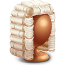 Judge Icon