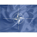Regular NATO Icon