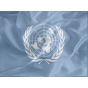Regular United Nations Icon