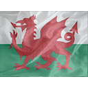 Regular Wales Icon