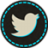 Hover Twitter Icon