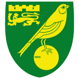 Norwich City Icon