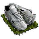 FIFA World Cup 009 Icon