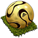 FIFA World Cup 010 Icon