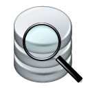 data find Icon