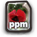 PPM Icon