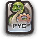PYC   Compiled Pyhton I Guess Icon