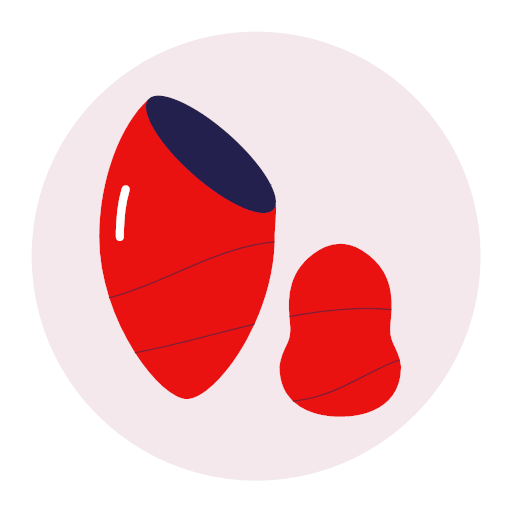 Beauty egg Icon