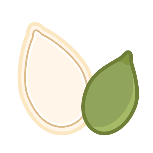 Pumpkin seeds Icon