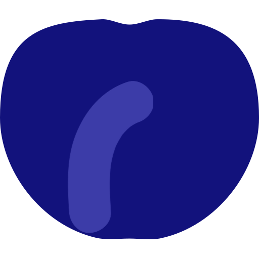 Dried Blueberry Icon