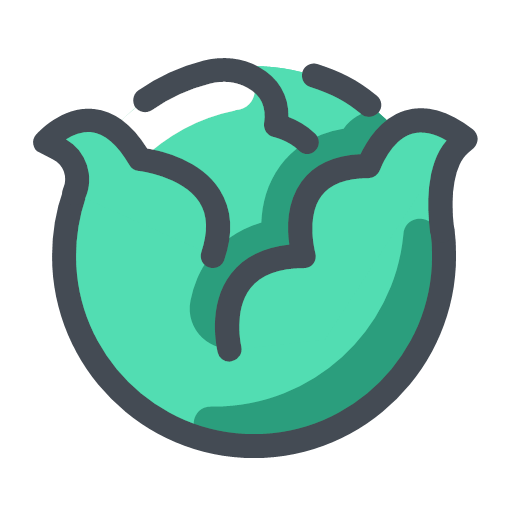 Cabbage Icon
