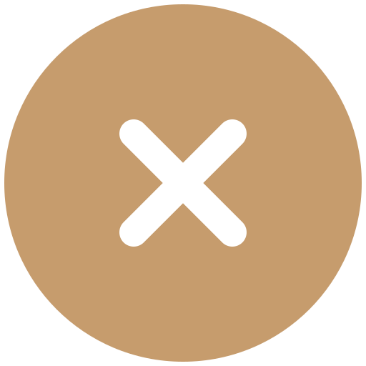False solid Icon