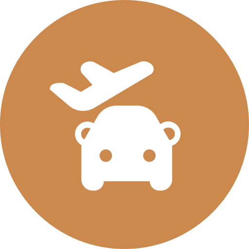 Pick someone up at the airport Icon