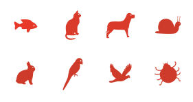 Animal Simple Icon Icons