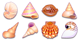 Sea Shells Icons